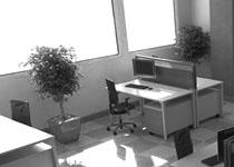 Φωτορεαλισμός χώρου γραφείων